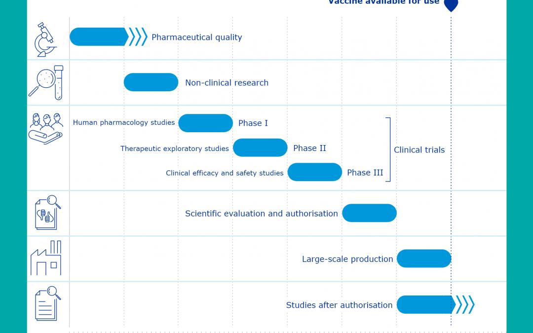 I vaccini e le fasi di ricerca: miti da sfatare