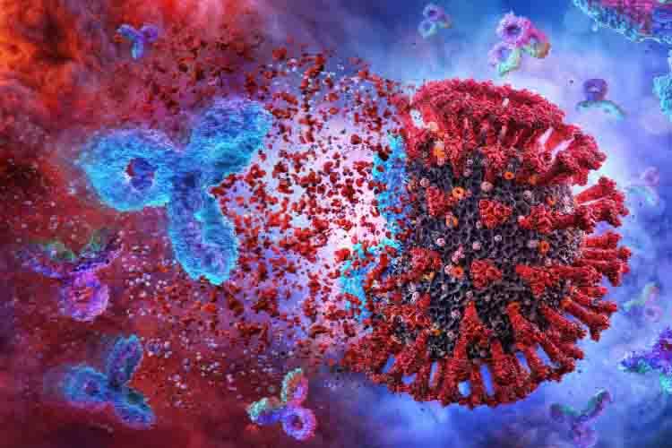 COVID e immunità